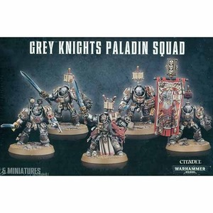 Grey Knight Paladin Squad/Terminators